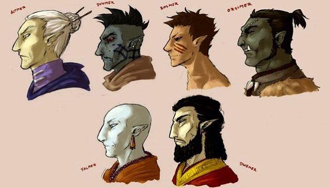 Altmer, Bosmer, Dunmer, Orismer, Falmer, Dwemer eleven races. High elf, dark elf, wood elf, and orc