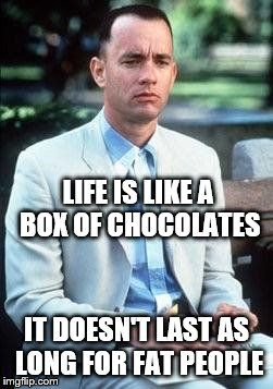 Forest gump | LIFE IS LIKE A BOX OF CHOCOLATES IT DOESN'T LAST AS LONG FOR FAT PEOPLE | image tagged in forest gump | made w/ Imgflip meme maker