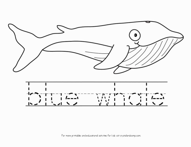 19 best Jonah and the whale images