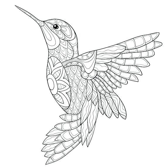 Pin By Tania Curtin On Tattoos Bird Coloring Pages Animal Coloring Pages Mandala Coloring Pages
