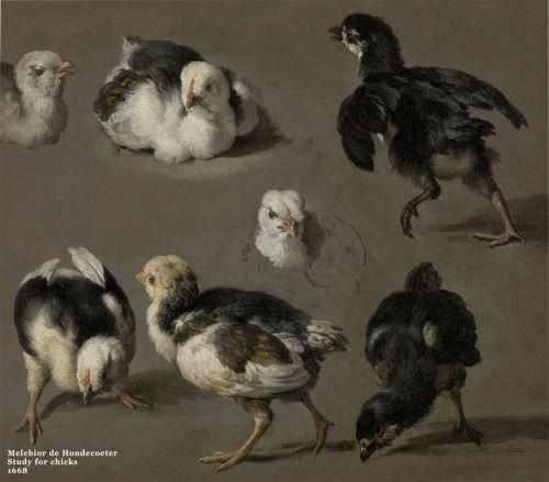 Çok sevimli değiller mi? 17.yüzyıl Hollanda'sının 90'dan fazla kuş resmiyle en bilinen kuş ressamı Melchior.