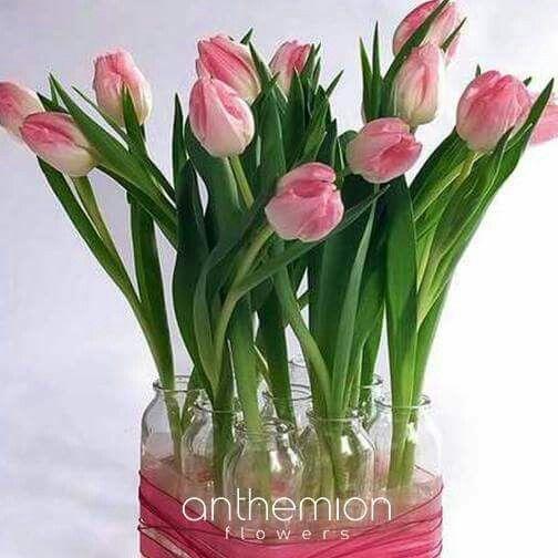 Διακοσμήστε το σπίτι, το γραφείο ή τον χώρο εργασίας σας με λουλουδια. Σας ανανεώνουν και σας αλλάζουν την διάθεση! flowers, love flowers, λουλούδια, send flowers, anthemionflowers, αποστολη λουλουδιων, ανθοπωλείο