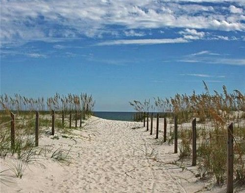 Surf's up! We Want to Visit America's Top 10 Beaches