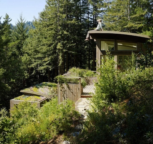 Two Hillside Cabins In The Trees By Feldman Architecture: My Wedding Idea Images On