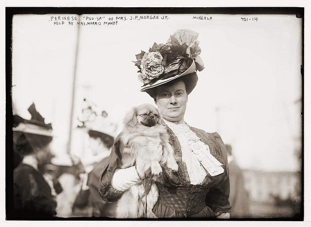 Mrs. JP Morgan and her peke