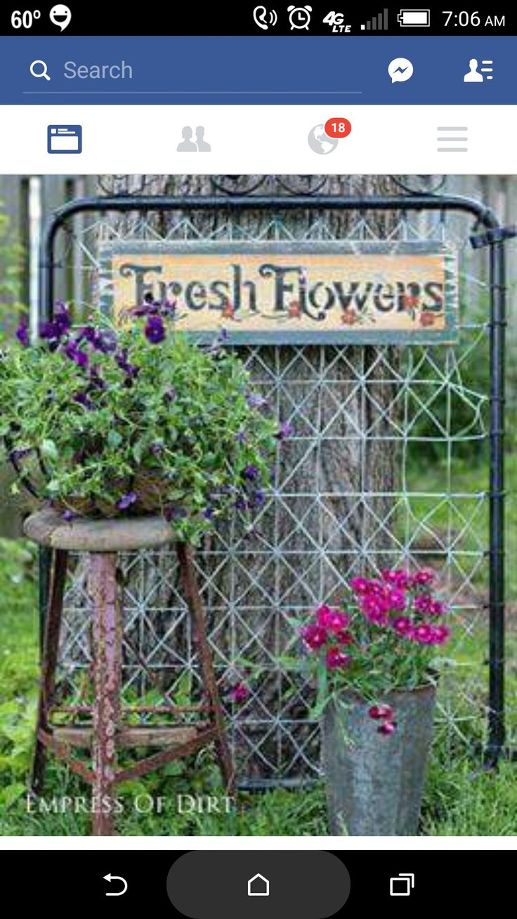 These are the three main keys for creating healthy, gorgeous garden  containers that flourish all season long: Gorgeous plant combinations  Fabulous ...