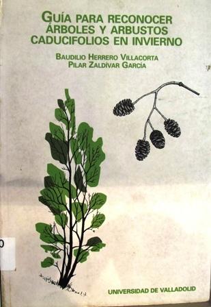Las 25 mejores ideas sobre arboles caducifolios en for Ver fotos de arboles de hoja perenne