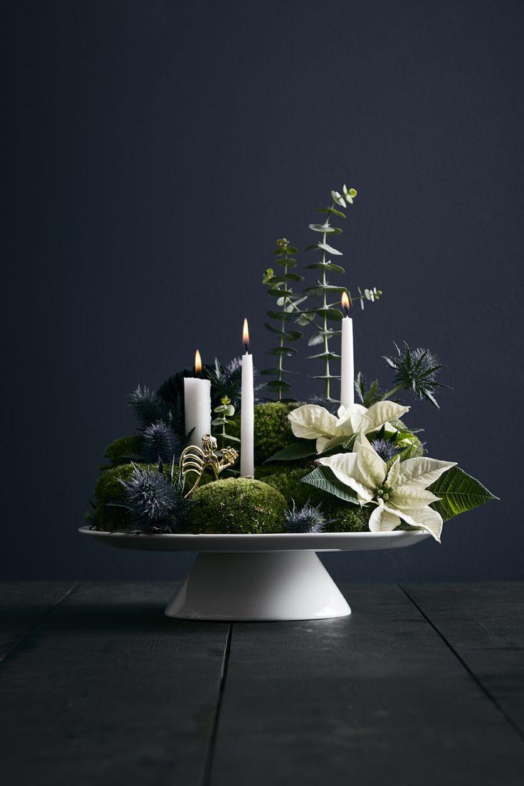 Jeg har lavet juledekoration sammen med Camilla for Femina Indret. Denne her jeg vil vise dig i dag, er et lille juleeventyr serveret på en kageopsats. Perfekt til midten af bordet juleaften, på sofabordet eller på en skænk i stuen. Det skal du bruge: mos-puder eucalyptus Juletræslys og alm. lys blomster oasis pynt: brug f.eks. juletræsornamenter som den vi har brugt fra Rosendahls Karen Blixens julekollektion små reagensglasvaser (du kan...