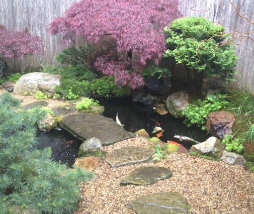 Koi Ponds And Gardens: 633 Best Japanese Gardens Images On Pinterest
