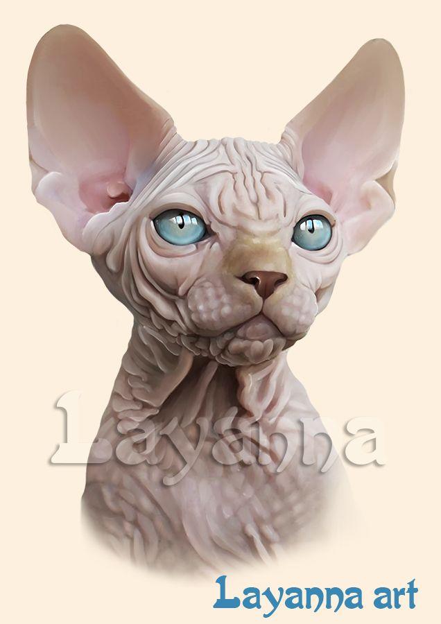 Портрет котенка породы Канадский Сфинкс. Голая кошка красного окраса. Могу нарисовать портрет вашего питомца. layanna@layanna.ru кот, питомец, животное, рисунок, заказать, подарок, Лаянна, cat, sphynx , sphinx , gato, gata, gatito, dibujo, kitten, Layanna