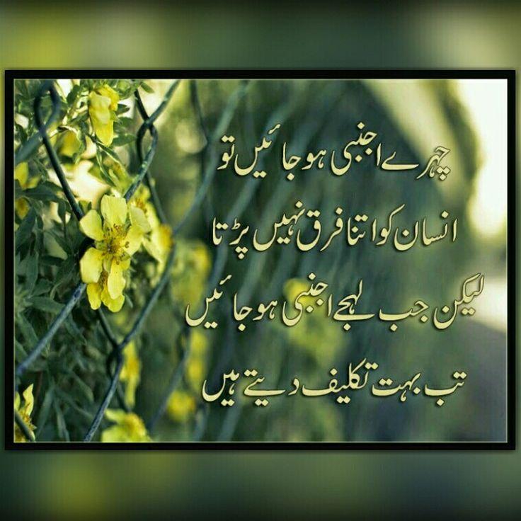 Best Poetry Quotes Of Love In Urdu: 25+ Best Friendship Quotes In Urdu On Pinterest