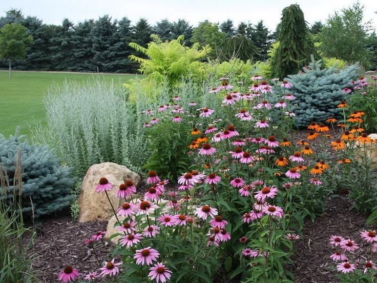 landscaping for privacy | Flower Garden Landscaping For Privacy