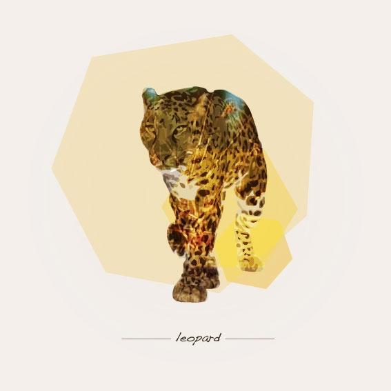Chester Cheetah Illustrations On Behance: 22 Best Leopard Images On Pinterest