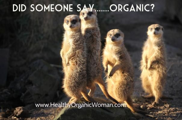 Did someone say.......organic? www.healthyorganicwoman.com.