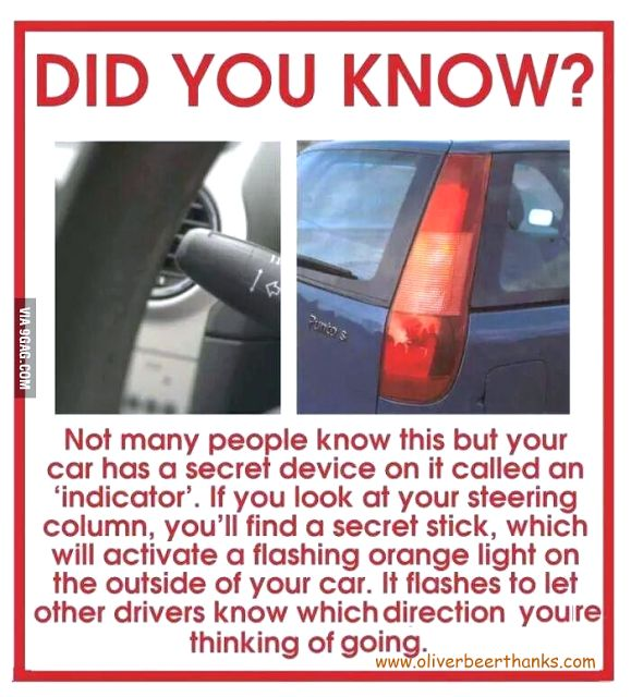 Mens Womens Humor : Driving Secret Revealed - Did you know...