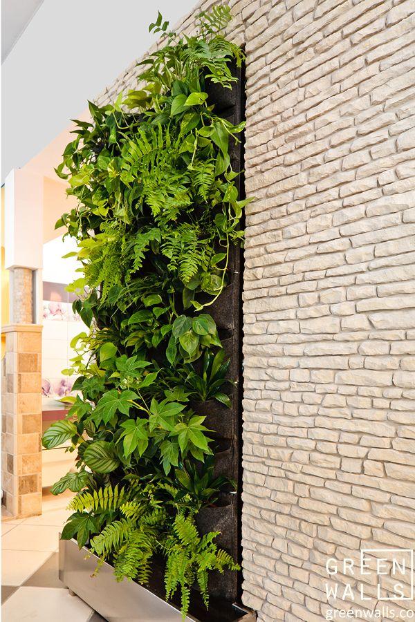Projektowanie i wykonawstwo zielonych ściany, aranżacje zielenią we wnętrzach