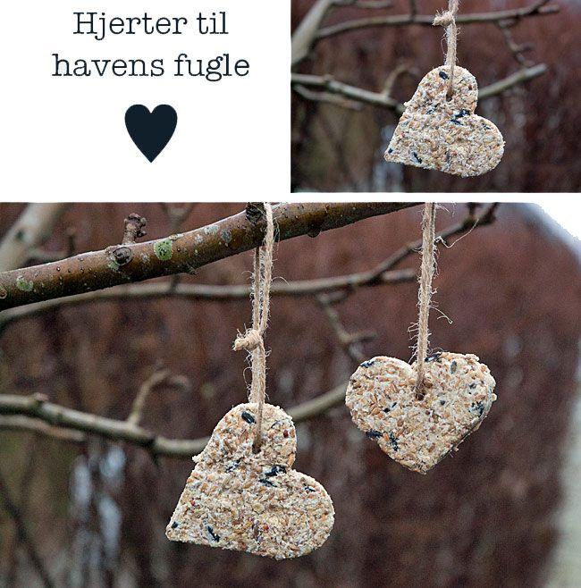 hjerter-til-havens-fugle