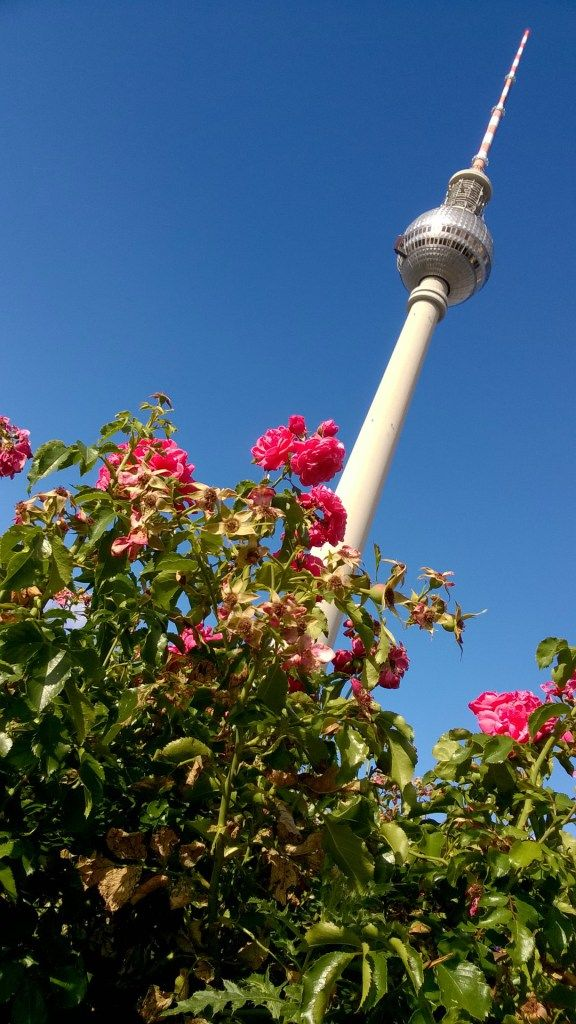 The television tower in the centre of Berlin #Berlin #travelling #flowers #beautiful