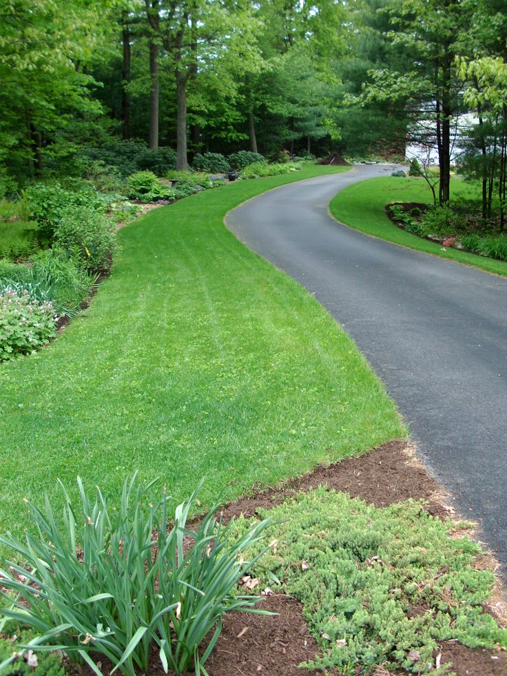 landscaping long driveway ideas | and, on the near right, the 'upper' perennial border, which is ...
