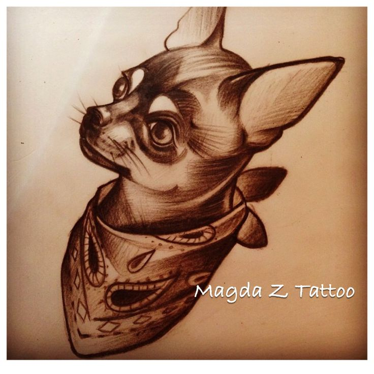 Chihuahua tattoo design tattoos pinterest for Is a d ointment good for new tattoos