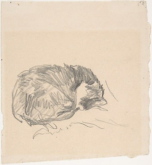 Édouard Manet (French, 1832–1883). A Cat Curled Up, Sleeping, 1861. The Metropolitan Museum of Art, New York. Bequest of Clifford A. Furst, by exchange, 1995 (1995.493) #cats