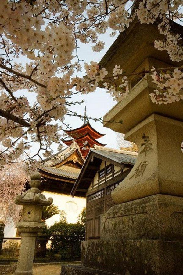 les plus belles maisons japonaises