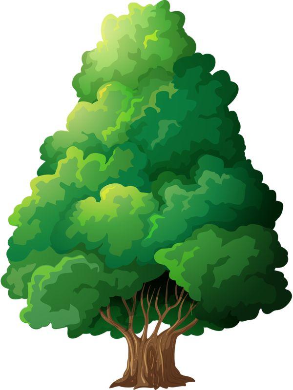 ●••°‿✿⁀ Trees ‿✿⁀°••●