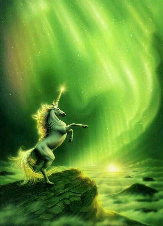 Parures Housses De Couette Licornes Et Pegase Unicorn Fantasy Unicorn And Fairies Unicorn Art