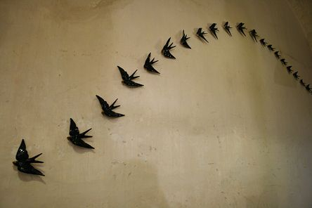 Swallow wall