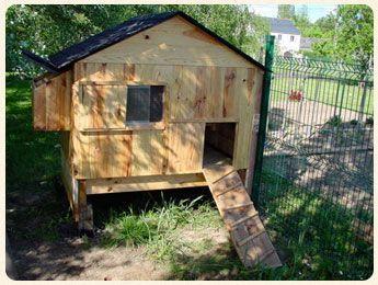 Plan de poulailler gratuit avec les étapes de la construction du poulailler sur pilotis de Castorfou pour héberger 3 poules Marans grâce au plans, étapes détaillés...