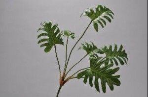 Silk-ka #plant philodendron #Zijde plant #philodendron 61 cm Kleur: groen € 13,50