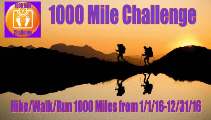 Registration Payment - 1000 Mile Challenge New Year's Edition