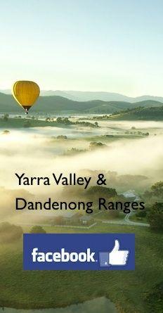 Tesselaar Tulip Festival | Experience the Yarra Valley