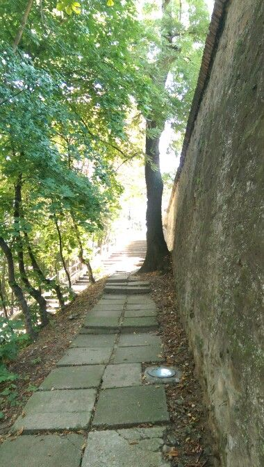 Sighișoara  zidul Cetății