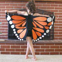Fjärilsvingar