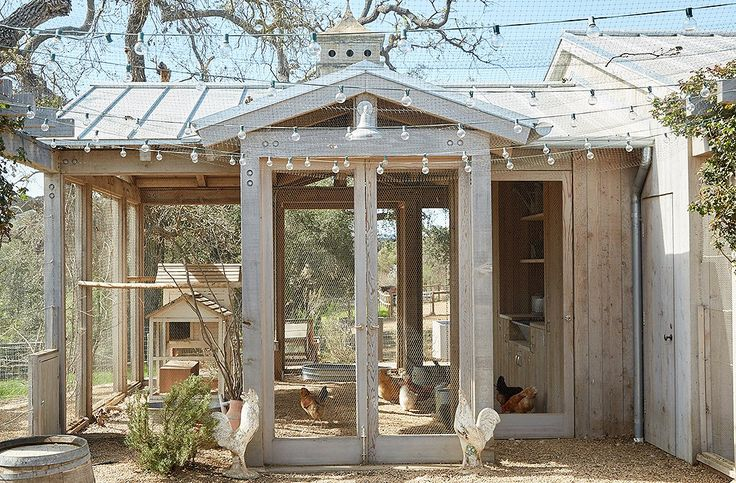 """The chicken coop is framed in wood and walled with open mesh. """"Champagne grapevines climb one wall, providing shade as well as a tasty treat for the chickens,"""" says Brooke."""
