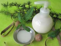 Shampooing tonifiant pour homme à la Menthe & Aloe Vera