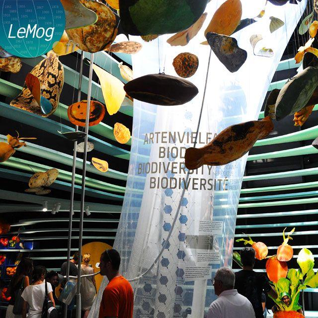 Expo 2015 Milano Blog: BIE prizes for Expo 2015 Milano pavilions...