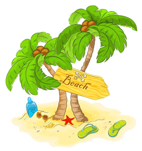 Transparent Beach Palm Decor PNG Clipart
