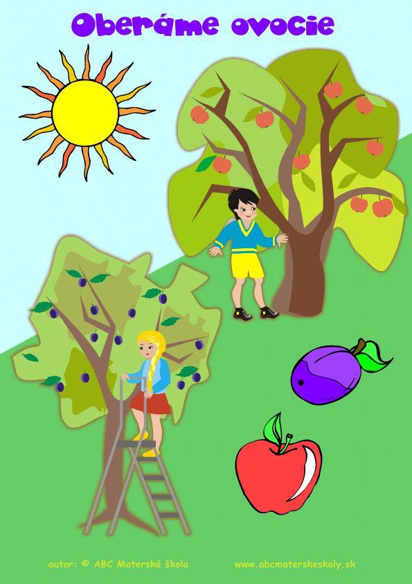 zber ovocia