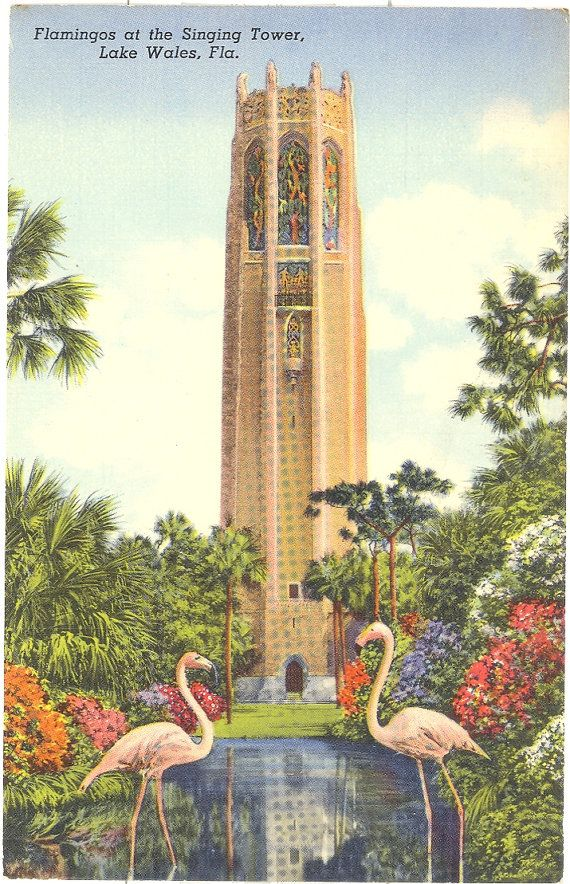 Vintage Florida Postcard - Lake Wales - Flamingos at Bok Singing Tower