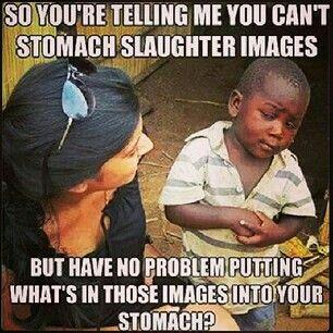 f39fc0ce594d6ef34c1f8ffbf02a3dcf--vegan-humor-vegan-memes.jpg