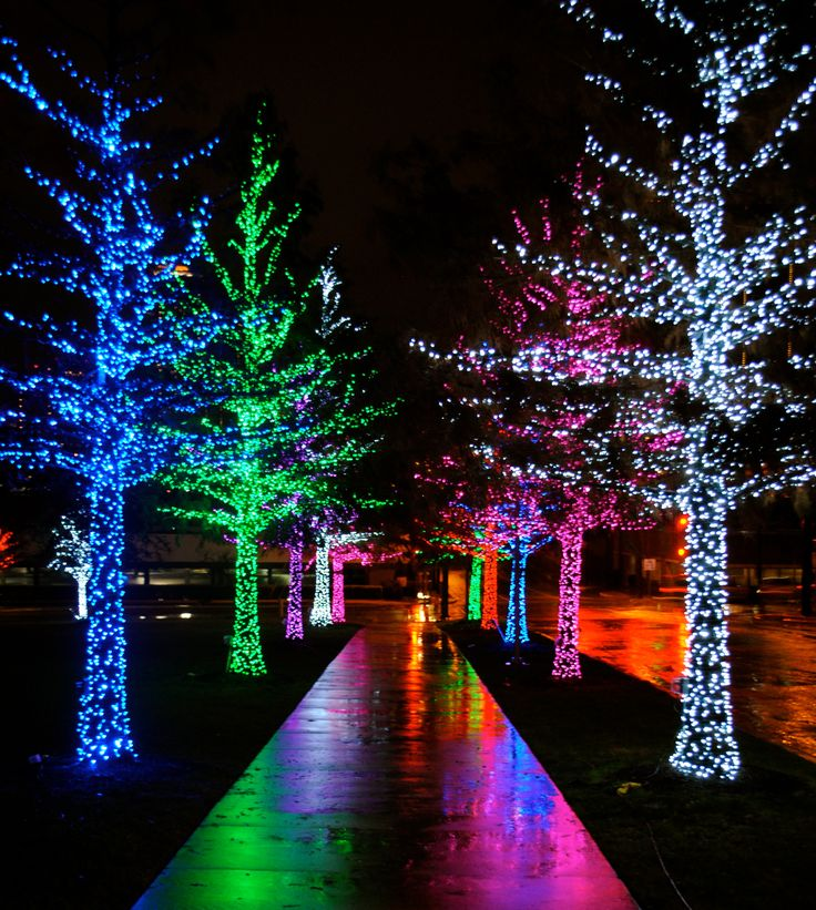 incandescent vs led christmas lights 2015 portland