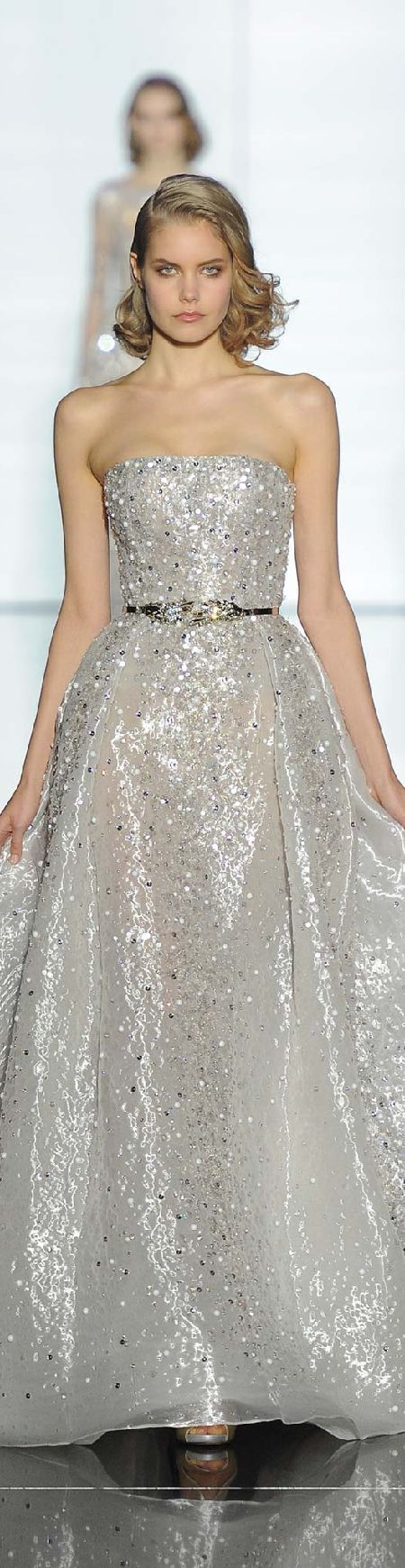 Zuhair Murad ~ Couture Silver Sequinned Strapless Gown 2015
