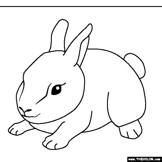 baby bunny coloring page fun i have a black and white bunny