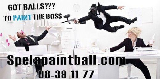 Paint Ball  Hannige / Stockholm