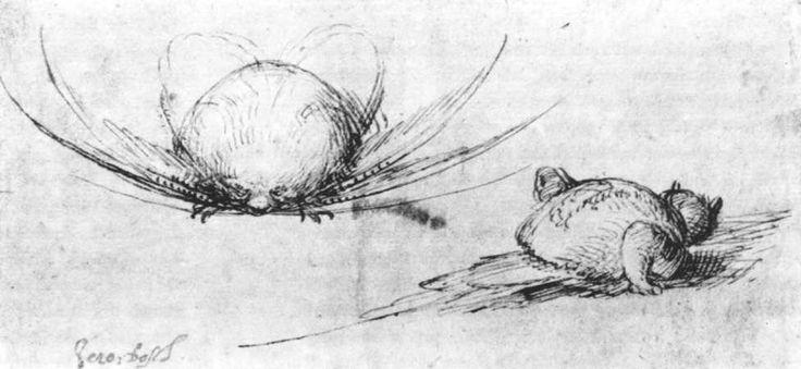 † Творчество Иеронима Босха † Наброски монстров, Гравюрный кабинет, Берлин. 1450 - 1516. Рисунок. Работа Босха.