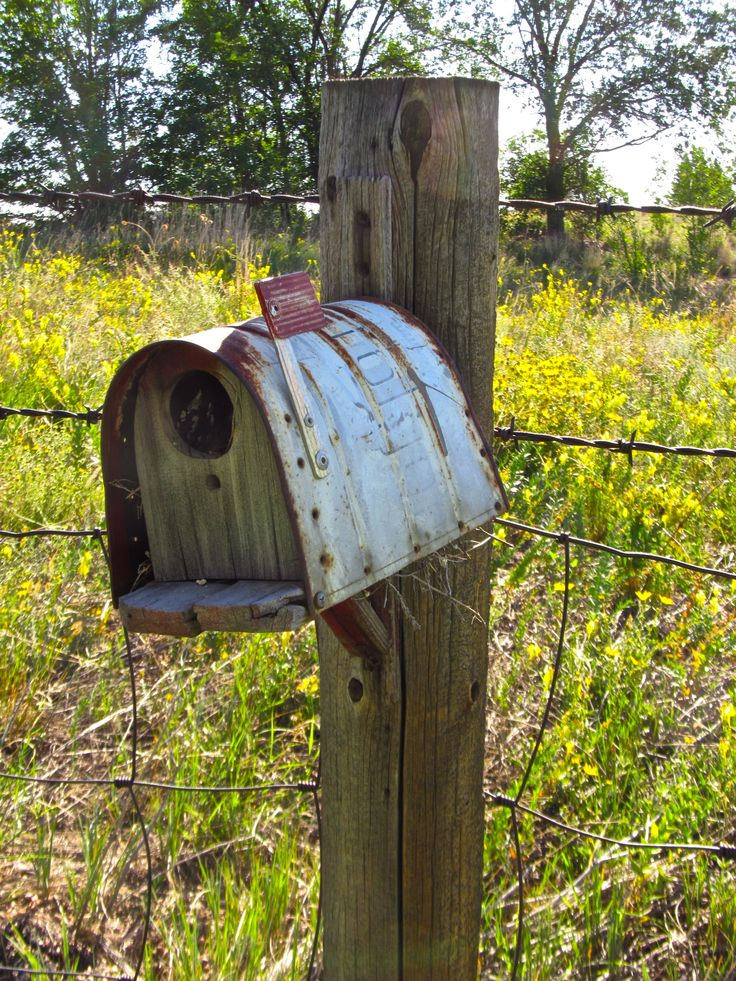 We have a bird house on every fence post!!!  So cute!