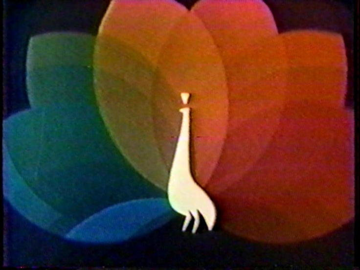 The NBC Peacock: In Living Color, 70S, Living Colors, Colors Rainbows, Peacock I Remember, Peacock In Living, Colors Tv, Flower, Nbc Peacock In