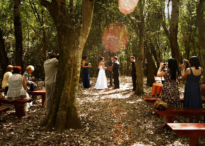 Otters House Chapel - A memorable wedding in the forest of Toadbury Hall